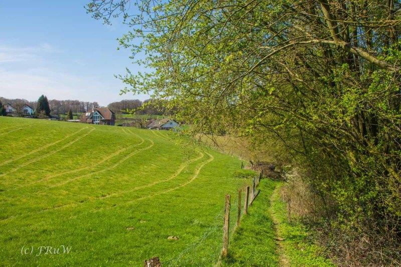 Suelzbahnsteig (209)