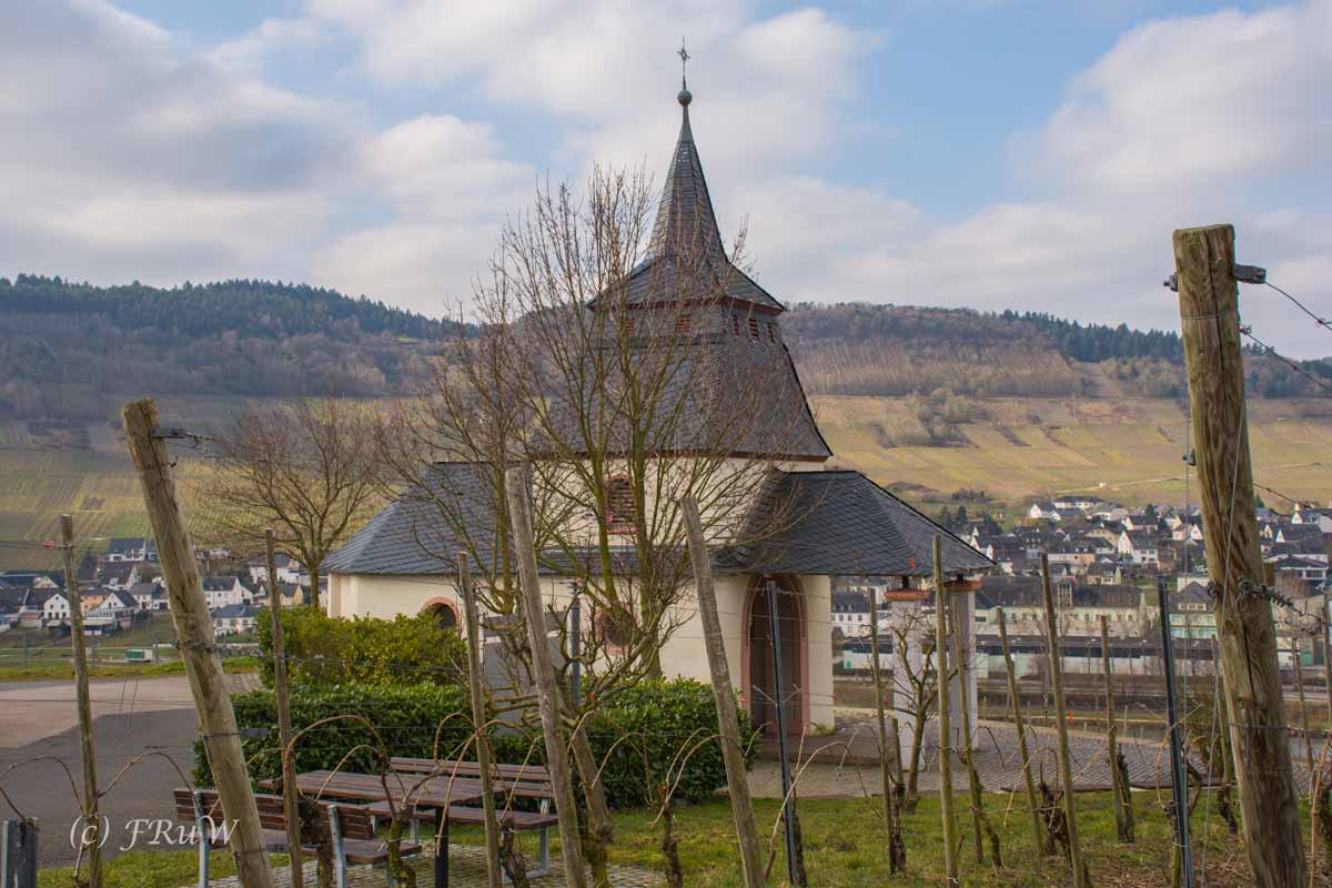 Trittenheim (14)