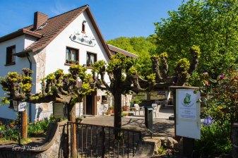 Drachenburg (6)