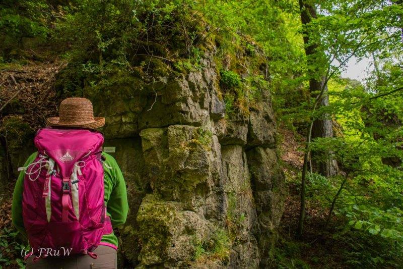 Gerolsteiner Felsenweg (26)