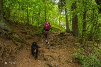 Gerolsteiner Felsenweg (95)