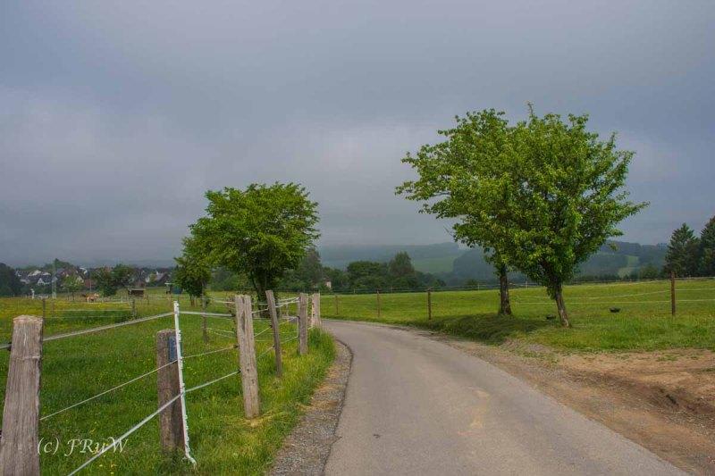 Liederweg_Lindlar (120)
