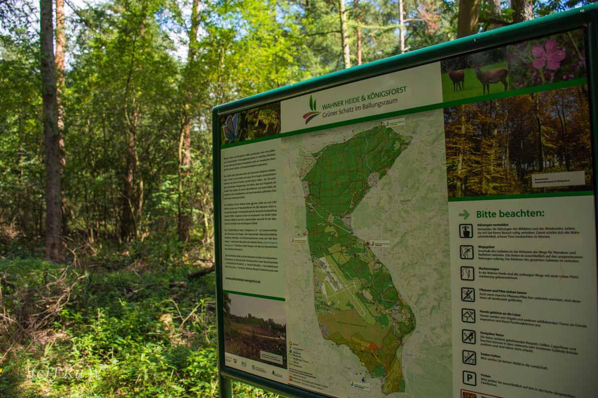 Ein Schild, das informiert wann hier Die Wahner Heide blüht