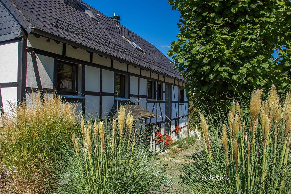 Bergischer_Streifzug_Pilgerweg (227)