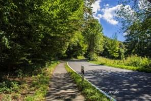 Bergischer_Streifzug_Pilgerweg (27)