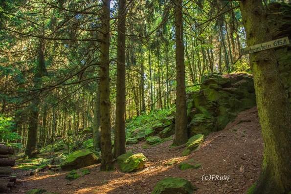 fuchskaute_erlebnisschleife_westerwald-175