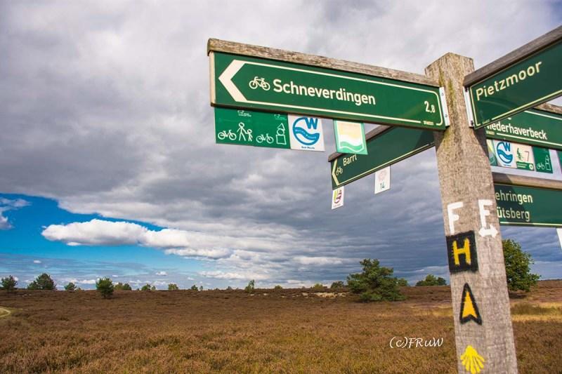niederhaverbeck_schneverdingen-189