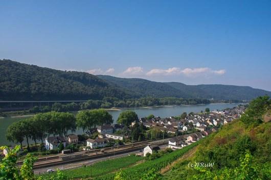 rheinsteig_rodenbach_leutesdorf-140
