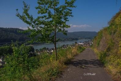 rheinsteig_rodenbach_leutesdorf-148