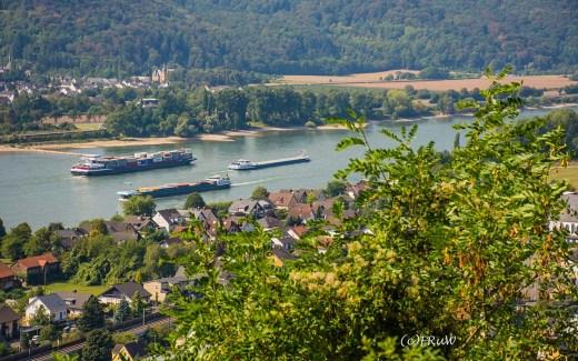 Rundwandern auf dem Rheinsteig - Rodenbach und Leutesdorf
