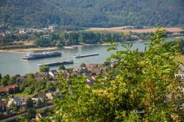 rheinsteig_rodenbach_leutesdorf-208