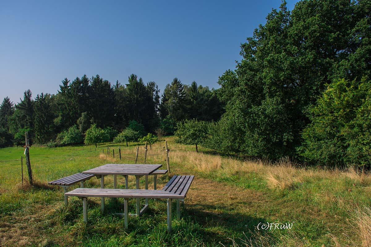 rheinsteig_rodenbach_leutesdorf-52