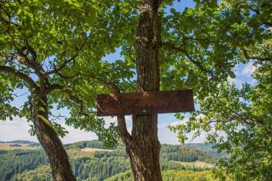 wacholder_ginster_-pilgerpfade-bei-st_-jost-129