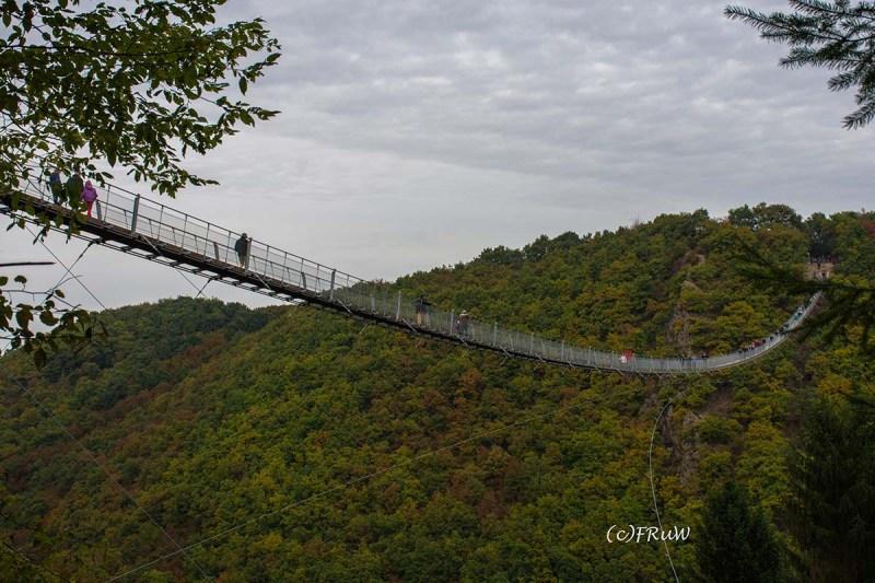 geierlayrunde-69 - Hängeseilbrücke im Hunsrück