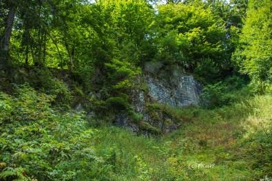 Wickelschichtung im Sandstein: Unregelmäßige, faltenähnliche Strukturen innerhalb einer Sandsteinbank nennt man Wickelschichtung oder -faltung.