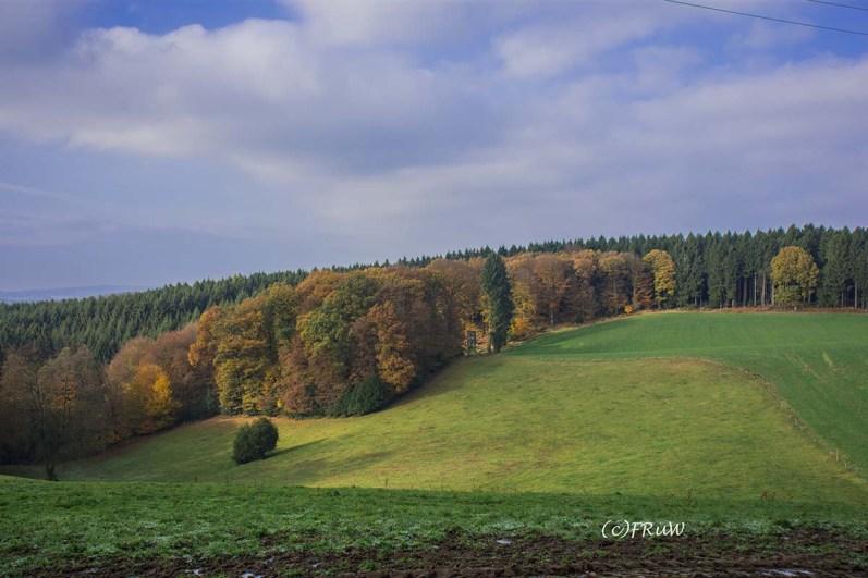 von-lindlar-auf-den-hoelzer-kop-88