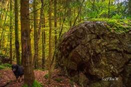 ruwerhochwaldschleife-151
