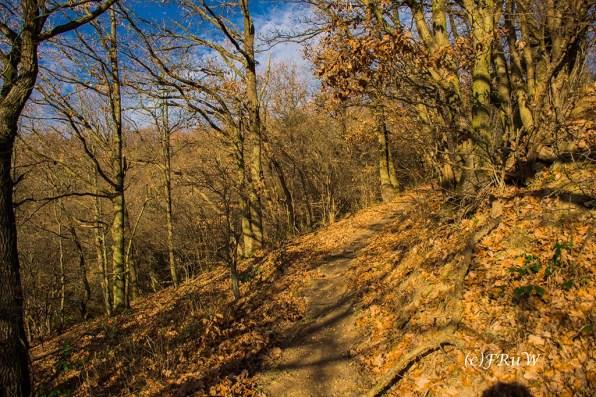 vulkan-und-panoramaweg-155
