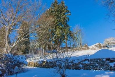 Herrliche Winter - Eifel - Landschaft