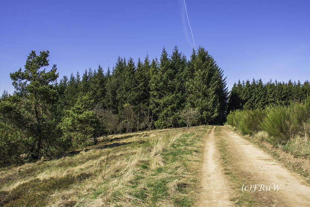 Bergheidenwegvariante (90)