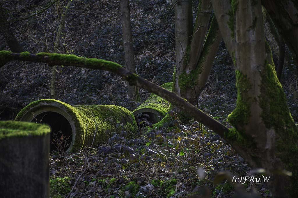 WoodArt (87)