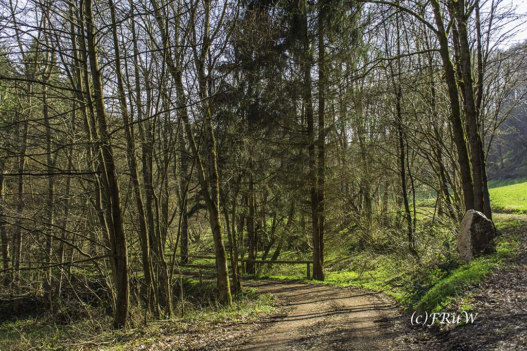 Eisenweg_No5 (118)