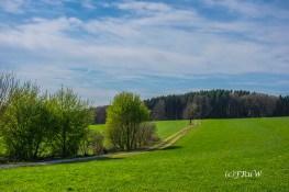 Hungenbachrunde (105)
