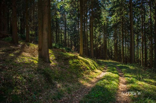 Hungenbachrunde (117)