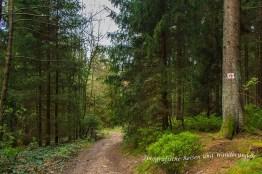 Liebesbankweg (122)