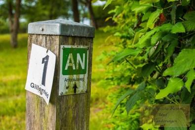 Mürmes- und Antoniusweg (9)