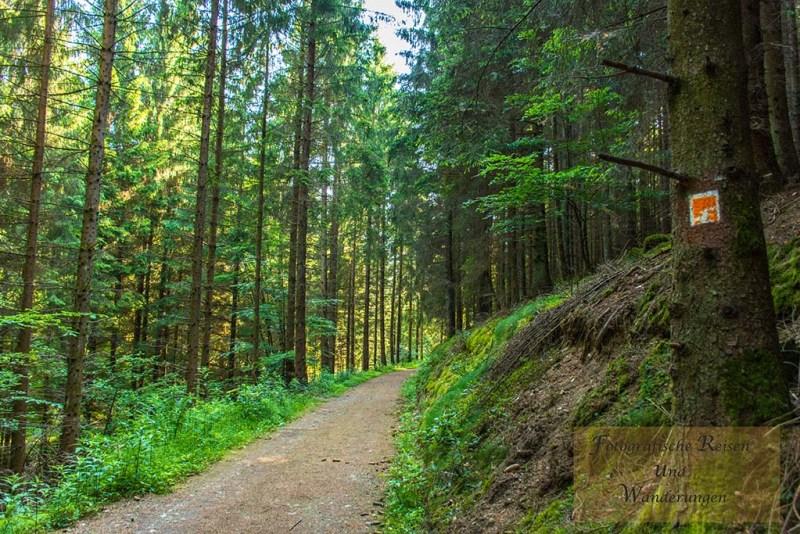 Sechs-Eichenrunde-Raßberg (12)