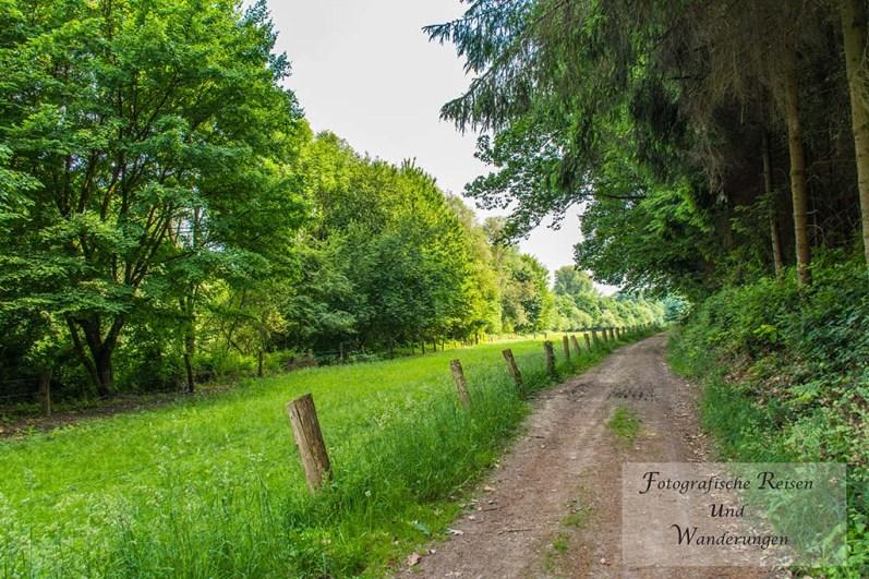 Feldweg zwischen Ortsmitte Leichlingen und Müllerhof