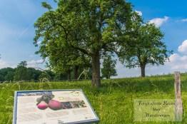 Informationen zur Obstkammer Leichlingen auf dem Obstweg