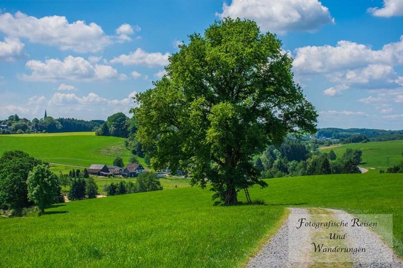 Tippeltour_Thier-nach-Wipperfürth (137)