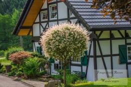Tippeltour_Thier-nach-Wipperfürth (25)