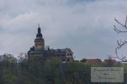 Umgebung Burg Falkenstein (69)