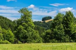 Heckenlandroute (44)