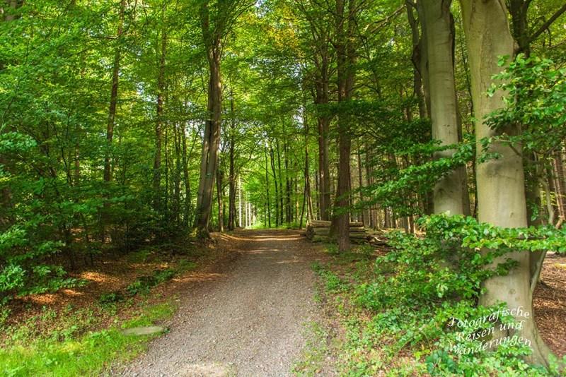 Denkmalweg (35)