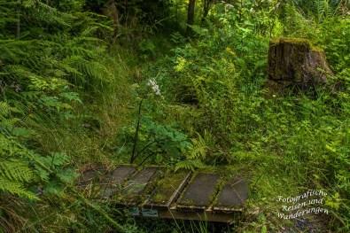 Hörlepanoramaweg (149)