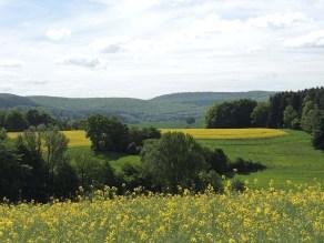 Blick vom Taller Wichtel2 (c) Corinna Will Gemeinde Kalletal