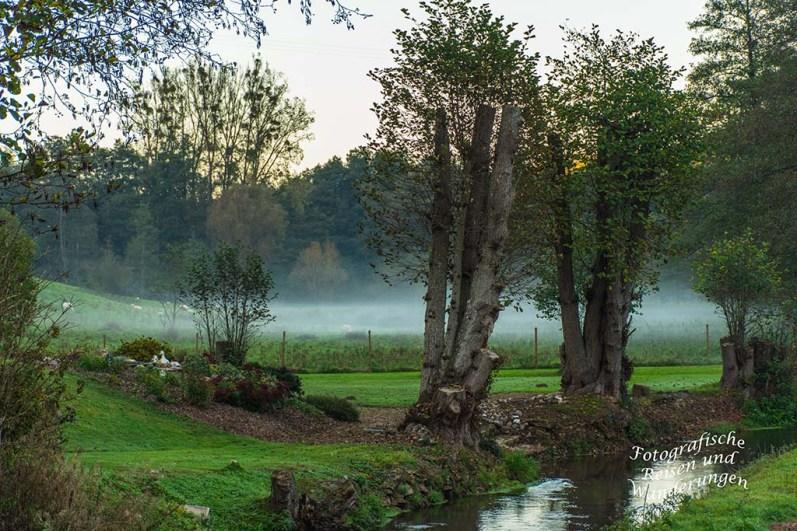 Nebel am Mühlbach - Ferienwohnung Rose in Klüsserath