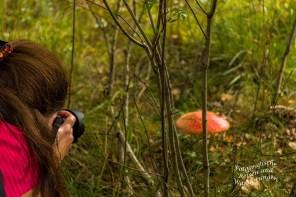 Den Pilz muss ich auch noch fotografieren