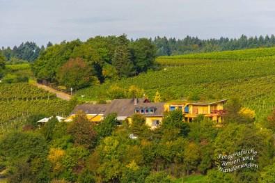Blick auf Förstershof Weinterassen