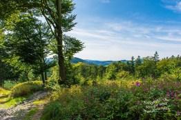 Traumhafte Wege Richtung Naturschutzgebiet Rehhecke