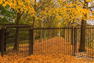 Blick in den Park der Wasserburg Anholt