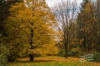 Schlosspark Stammheim Holzskulpturen