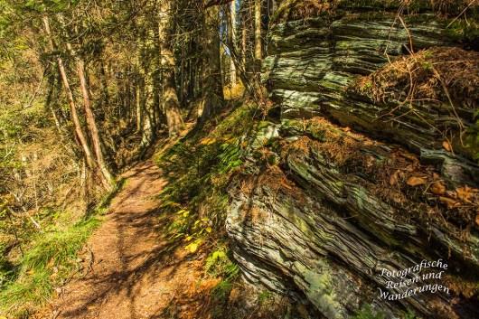 Schmaler Waldweg