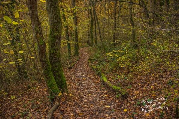 Waldweg - Nette Schieferpfad