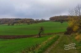 Die Felder sehen wie frisch gekämmt aus