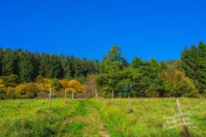 Wiesenweg im Herbst - Hunolsteiner Klammtour